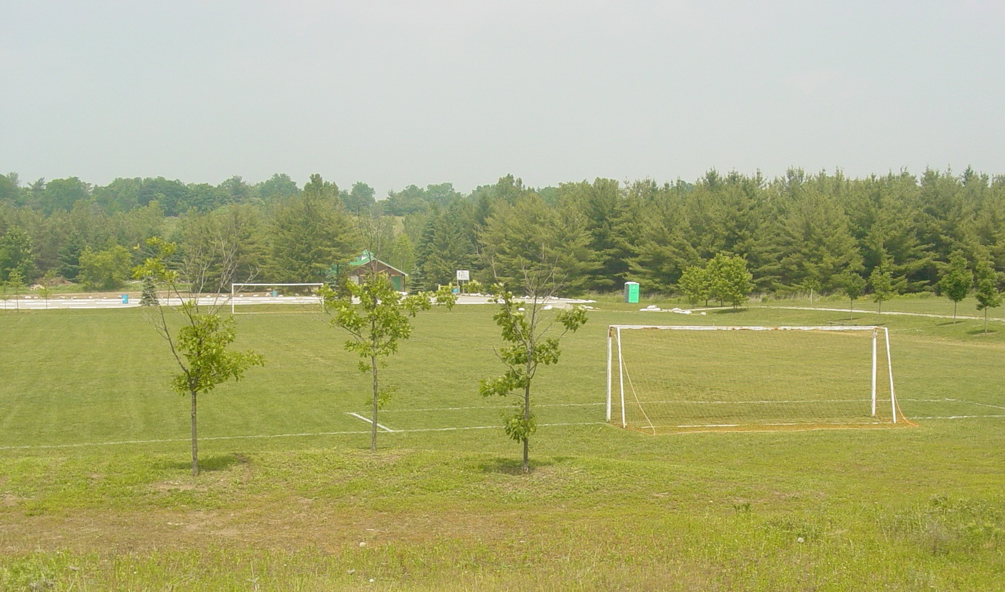 soccerfield crop
