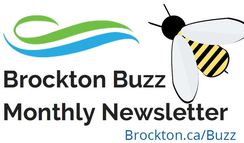 Brockton Buzz Newsletter Logo